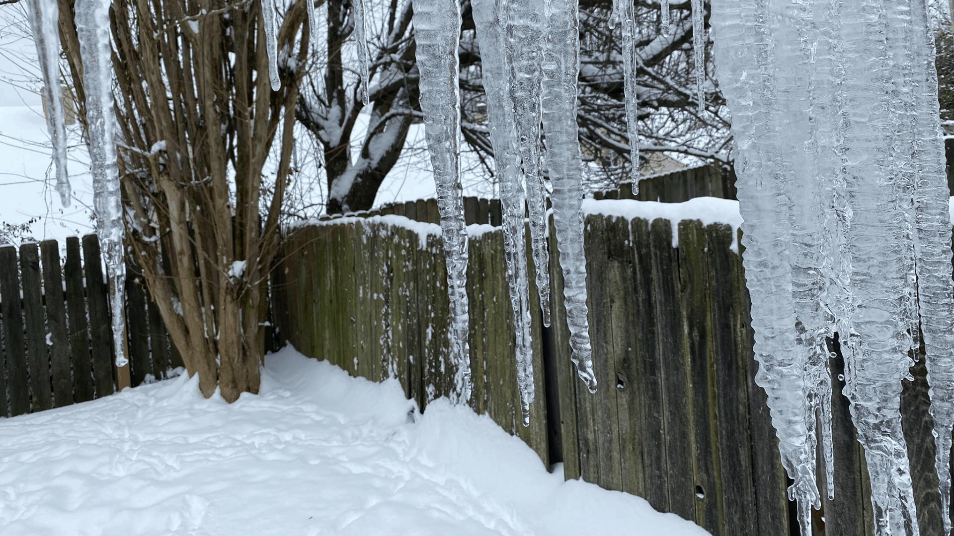 Tennessee reporta 10 muertes relacionadas a las tormentas invernales que azotaron el estado | Local by Facundo Valdez