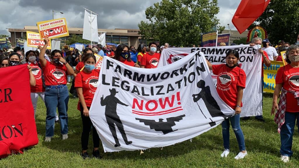 Asesora del Senado vuelve a rechazar plan demócrata para incluir un camino a la ciudadanía para millones | Noticia by Memphis Noticias